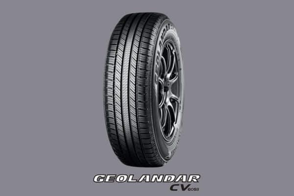03 - GEOLANDAR-CV-G058