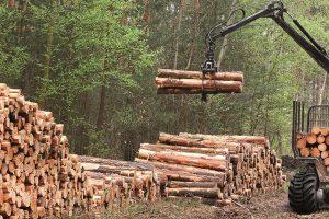 BKT apresenta nova gama pneus florestais